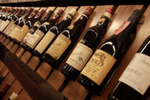 Barolo e Barbaresco - 1 day tour